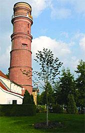 Leuchtturm mit Linde